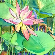 lotus-flower-thumb5055129