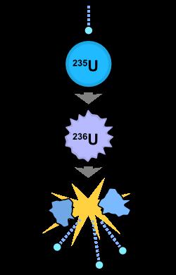 Biểu đồ phản ứng phân hạch Uranium 235