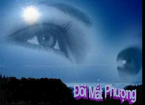 http://thuvienhoasen.org/images/file/cYezcFYj0wgBAC0D/doimatphuong.jpg
