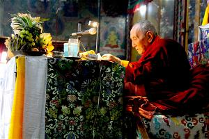 Yangthang Rinpoche