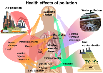 Health effects of pollution (Wikipedia)