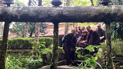 Thầy Nhất Hạnh đi thăm các học trò và di dạo tại chùa Từ Hiếu sáng 29 10 18