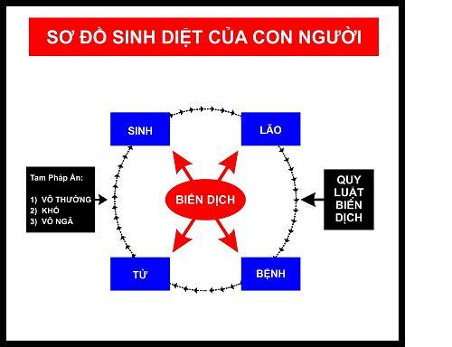 so do sinh diet cua con nguoi