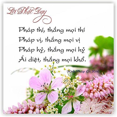 loipha13