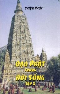 daophattrongdoisong-cover-content