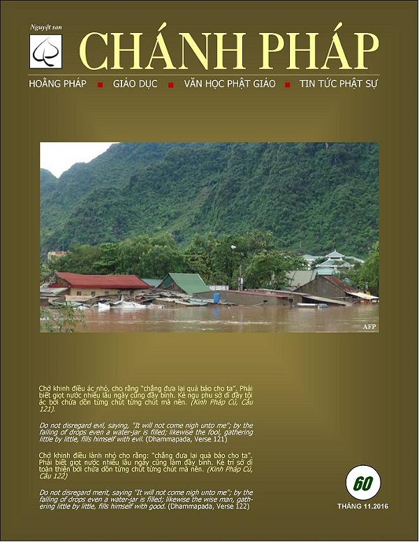 chanhphap60 cover
