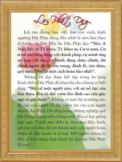 loi_phat_day