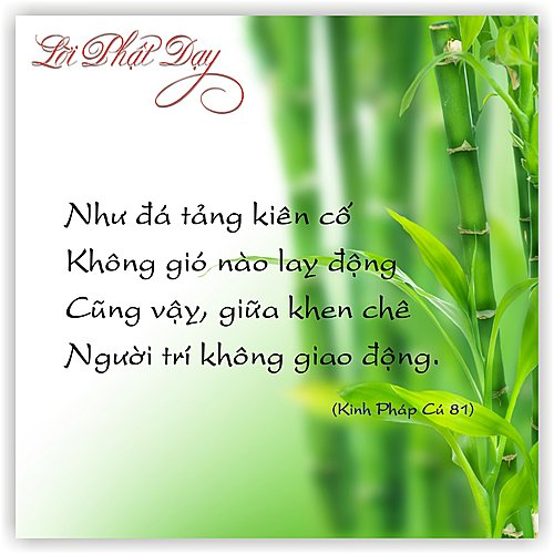 loipha15