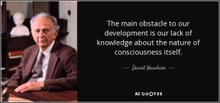 consciousness-12.jpg