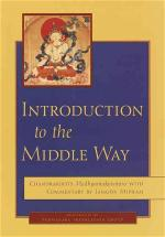introduction-to-the-middle-way